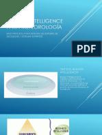 BUSINESS INTELLIGENCE PARA METEOROLOGÍA - presentación.pdf
