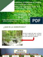Presentacionhidroponia 141121164635 Conversion Gate01