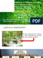 presentacionhidroponia-141121164635-conversion-gate01.pdf