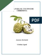 Chirrimoya Fruti.docx