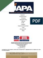 trabajo final practica docente yuberkys abreu.pdf
