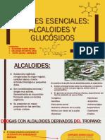 ALCALOIDES Y GLUCOSIDOS.pptx