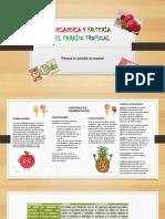 Heladeria y Fruterìa El Paraìso Tropical