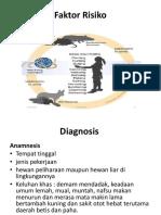 Leptospira.pptx