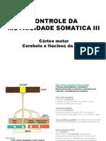 14 _controle_motricidade_voluntaria
