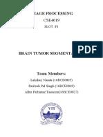 Brain Tumour Segmentation 2