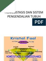 Homeostasis Dan Sistem Pengendalian Tubuh