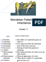 Ch 11 Mendelian Patterns of Inheritance