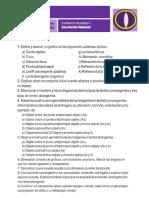 CS007-Optica