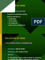 Urine Analysis - Copy - Copy