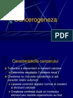 Prof. Dr. Mocanu_Curs 6 Cancerogeneza