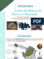 Sid_peletizacion en Venezuela