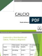 Calcio Clin II