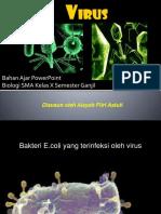 4. PPT VIRUS