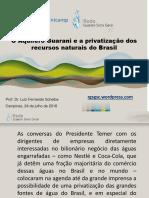 O Aquífero Guarani e a privatização dos recursos naturais do Brasil (Scheibe 2018) [37p].pdf