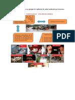 vigilancia de salud ambiental por desastres naturales..docx
