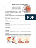 Enfermedades Del Sistema Circulatorio Humano
