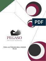 7-Guida_Piattaforma_Studente_Stage.pdf