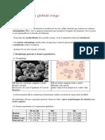 Physiologie du globule rouge.docx