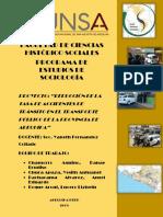 GRUPO4_REDUCCIÓN_DE_LA_TASA_DE_ACCIDENTES_DE_TRÁNSITO_EN_EL_TRANSPORTE_PÚBLICO_DE_LA_PROVINCIA_DE_AREQUIPA.docx