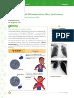 adn.pdf