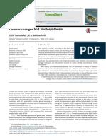 fotosintesis y cambio climativo