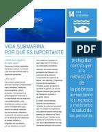 Objetivo 14 - Vida submarina.pdf