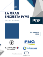 LA GRAN ENCUESTA PYME