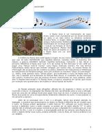 APOSTILA DE FLAUTA DOCE