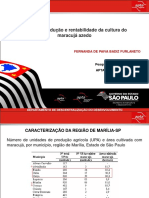Fernanda - Custo de Produção