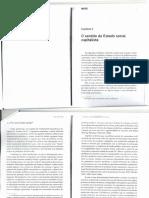 o sentido de estado social capitalista.pdf