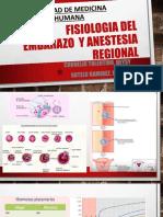 Fisiologia en El Embarazo _ Dr Guitierrez
