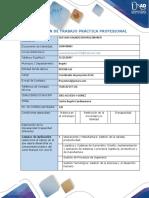 Anexo 1 Formato Plan de Trabajo V2_Edwin Guevara