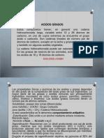 Acidos Grasos Pw (1)