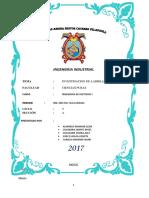Imprimir Informe Mestas 1