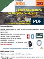 Ssomars Seguridad y Salud Ocupacional en Trabajos de Mineria