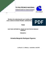 rodriguezf2 (1).pdf