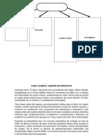 6° TRABAJO DE ENFERMERIA VII CASO CLINICO CANCER DE PROSTATA
