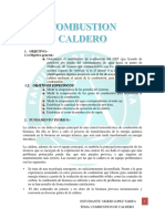 Combustion Caldero1111 1