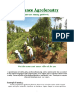 Abundance Agroforestry - A Syntropic Farming Guidebook