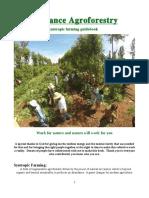 Abundance Agroforestry - A Syntropic Farming Guidebook