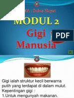 gigimanusia-130204210213-phpapp01