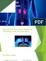 m6 urinary system for website
