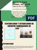 ESTABILIDAD Y FLUIDOS GRUPO.pptx