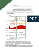 Histología del ovario.docx