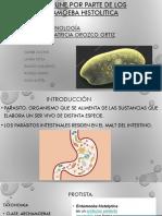 Parasitos Entamoeba Histolytica.equipo5