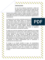 PROYECTO HUESITOS.docx