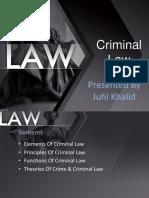 Criminal Law Presentation