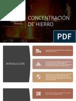 CONCENTRACIÓN DE HIERRO FINAL 1.pptx