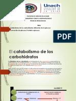 Catabolismo de Los Carbohidratos Diferentes de La Glucosa y Conversion de La Glucosa 6 Fosfato en Glucosa